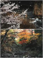 森川輝男写真展「柏原渓谷春秋…県下秀逸の渓谷美」